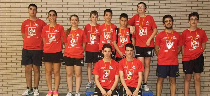 cai-santiago-equipos-edades-20132014